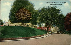 Cole's Hill Showing North Street