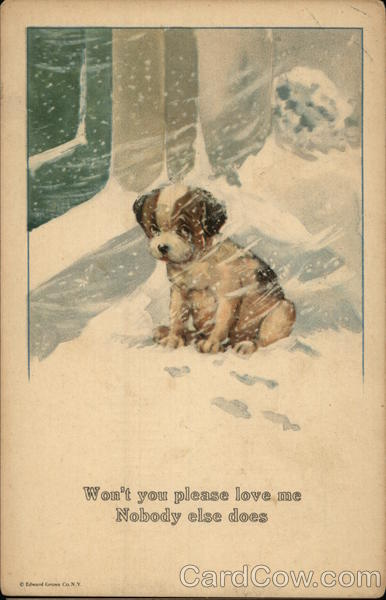 Puppy in Snow Storm Charles Twelvetrees Dogs