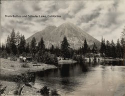 Black Buttes & Schafer Lake Rare Original Photograph Southern Pacific S-186