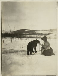 2 Rare Photographs Woman with Bear Cub, Bear in Tree Original Photograph