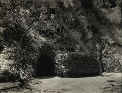 Entrance to Cresta Blanca Wine Tunnel Rare Original Photograph
