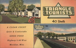 Triangle Tourists Court
