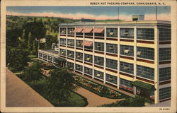 The Main Office Building of the Beech Nut Packing Co.