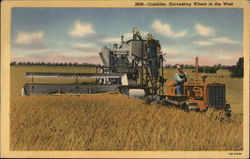 Combine, Harvesting Wheat in the West