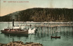Salmon Traps in Alaskan Waters