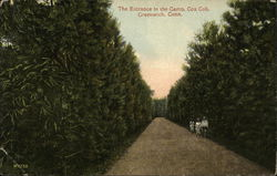 Entrance to the Camp, Cos. Cobb