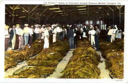 Scene At Georgia's Largest Tobacco Market Postcard