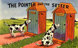 The Pointer And The Setter
