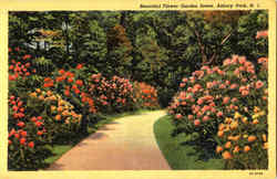 Beautiful Flower Garden Scene, Asbury Park