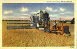 Combine Harvesting Wheat In Kansas