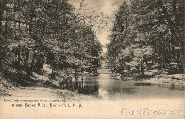 View of River, Bronx Park New York