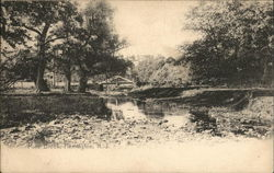View of Mine Brook