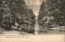 View of River, Bronx Park