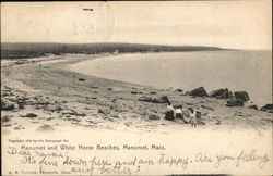 Manomet and White Horse Beaches