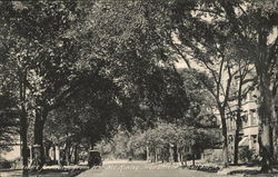 Delaware Avenue, From the McKinley Monument