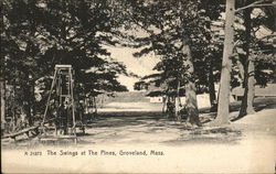 The Swings at the Pines