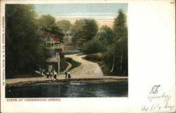 Scene at Underwood Spring Postcard