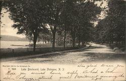 Lake Boulevard