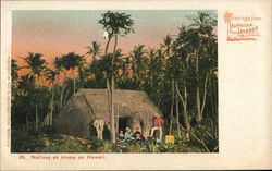 Natives at Home on Hawaii
