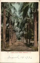 A Royal Palm Avenue