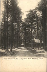 Longwood Avenue, Coggeshall Park