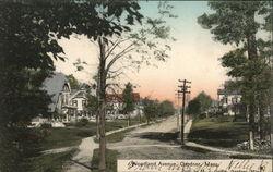 Woodland Avenue