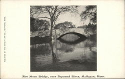 New Stone Bridge, Over Neponset River