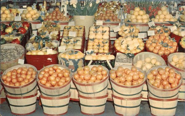 A Shipper's Display of Tropical Fruit Seen Throughout Florida