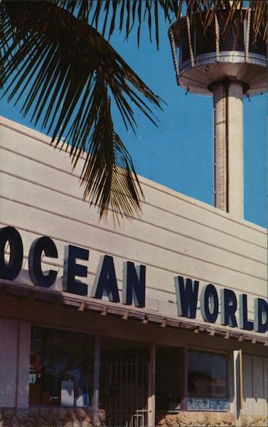 Ocean World Aquarium Fort Lauderdale Fl Postcard