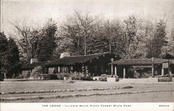 The Lodge, Illinois White Pines Forest State Park
