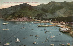 View of Avalon Bay