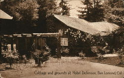 Cottage and Grounds at Hotel Dickinson