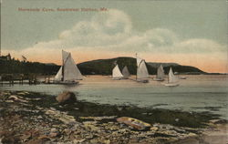 Yachts in Norwoods Cove Postcard