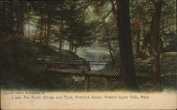 The Rustic Bridge and Pond, Hemlock Gorge