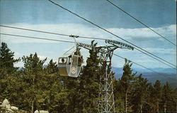 Gondola approaching summit, Mt Whittier