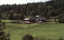 The Kingston 5 Ranch