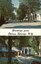 Greetings from Sharon Springs, N. Y.