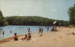 Beach at Pennyrile Forest State Park Postcard