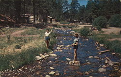 Ladies Play in a Stream Postcard