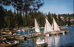 Sailboats at Beautiful Pinecrest Lake