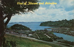 View of Tiburon and Belvedere