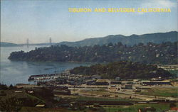 View of Two San Francisco Suburbs