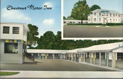 Chestnut Motor Inn