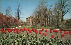 Earlham College - Campus in Spring