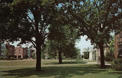 Beloit College - Residential Quadrangle Postcard
