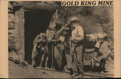 Gold King Mine