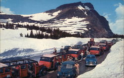 Cars on Logan Pass