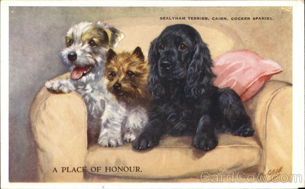 A Place of Honor - Sealyham Terrier, Cairn, Cocker Spaniel