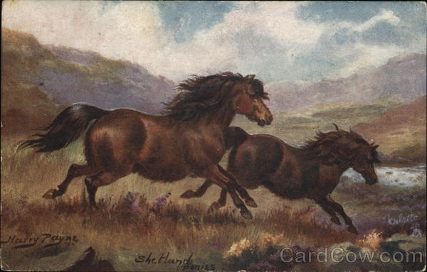 Two Horses Running Wild Harry Payne