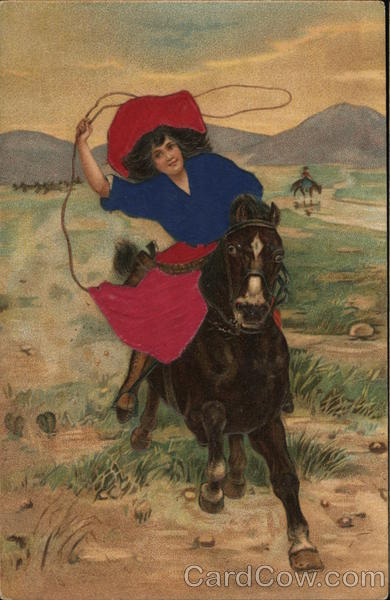 Woman Riding Horse with Lasso Cowboy Western Silk & Fabric Applique